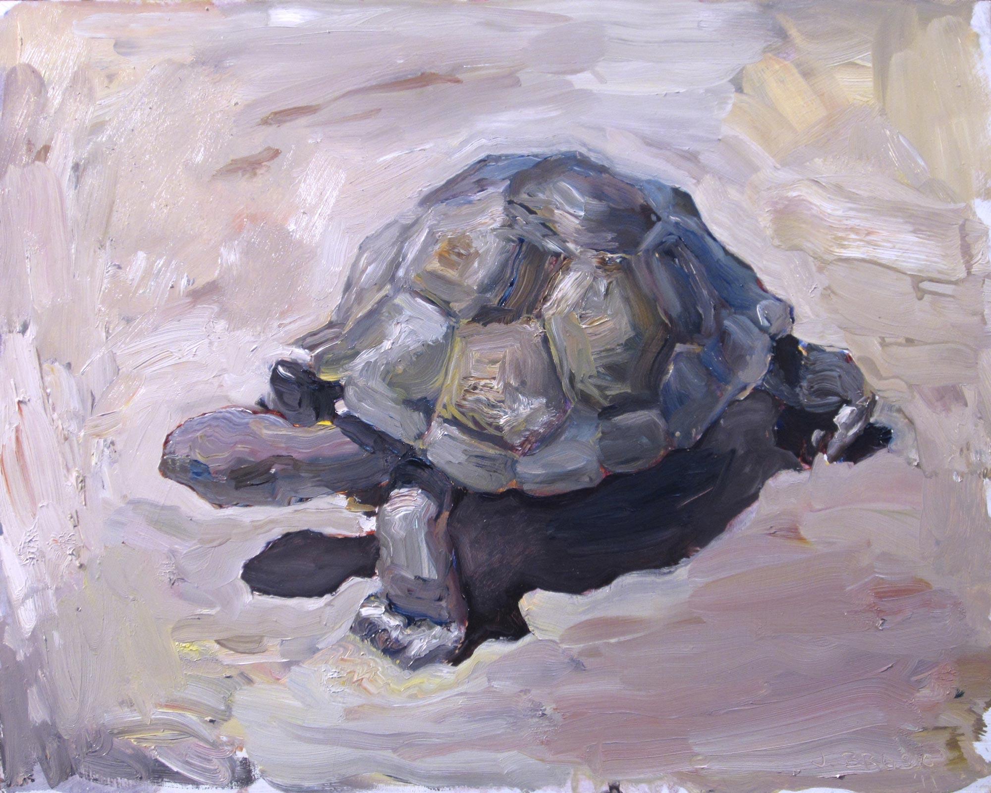 Desert Tortoise, 18 x 24, oil on panel, 2012