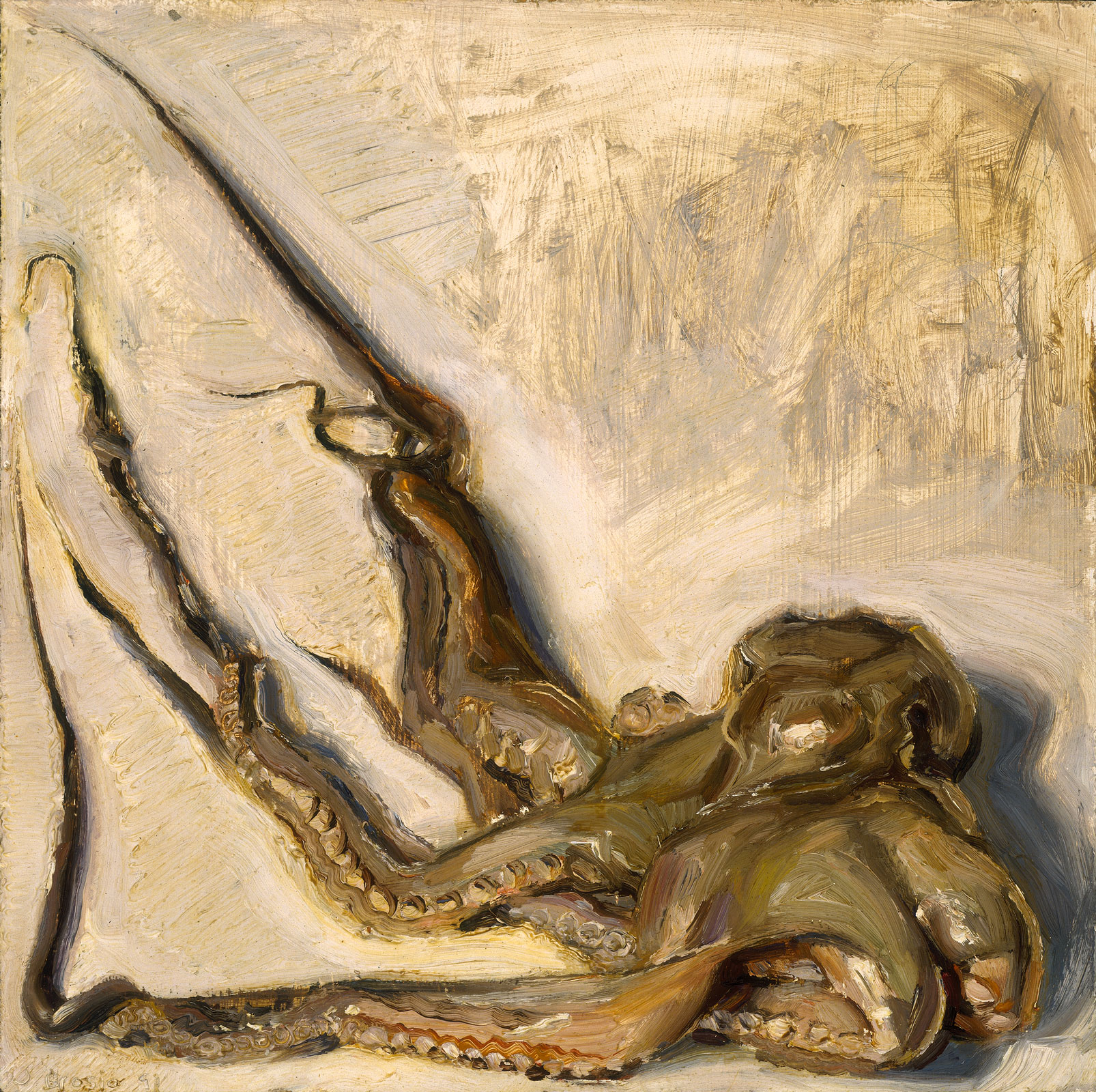 Octopus, 15 x 15, oil on board, 1991