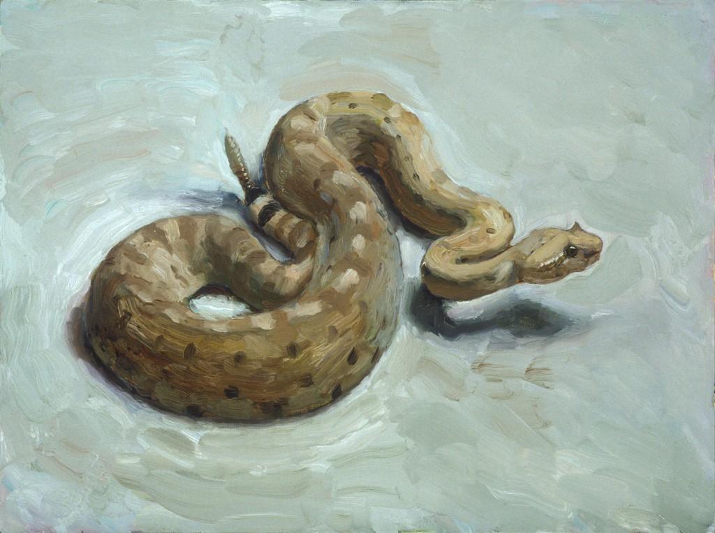 Rattlesnake 2
