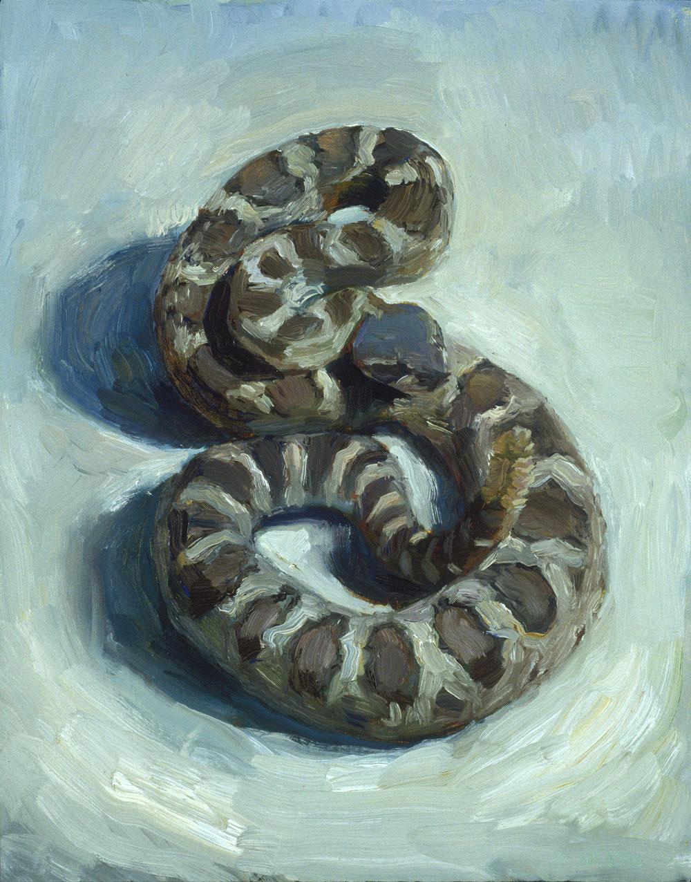 Rattlesnake, 20 x 16, 2002