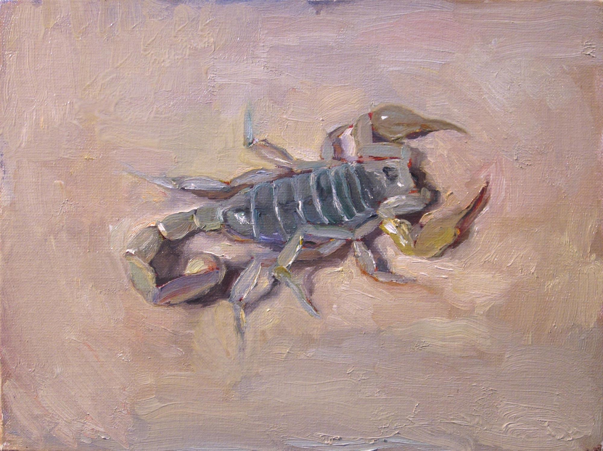 Scorpion, 8 x 10, oil on canvas, 2012